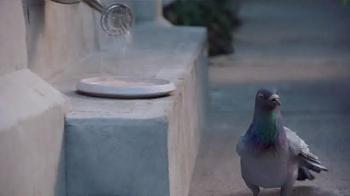 JetBlue TV Spot, 'Recurring Dream' - Thumbnail 4