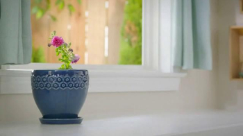 Miracle-Gro TV Spot, 'Water Is Not Enough' - Thumbnail 4