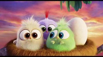 The Angry Birds Movie - Alternate Trailer 21