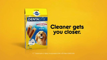 Pedigree Dentastix TV Spot, 'Messy Baby' - Thumbnail 6