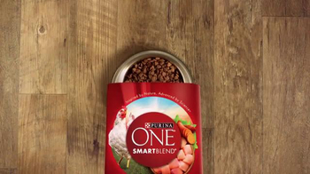 Purina One SmartBlend TV Spot, 'No Corn or Wheat'