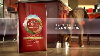 Purina One SmartBlend TV Spot, 'No Corn or Wheat' - Thumbnail 7