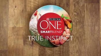 Purina One SmartBlend TV Spot, 'No Corn or Wheat' - Thumbnail 2
