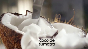 Coffee-Mate Natural Bliss Coconut Milk Creamer TV Spot, 'Cremoso' [Spanish] - Thumbnail 4