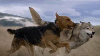 Blue Buffalo BLUE Wilderness TV Spot, 'Wolf Dreams: Savings' - Thumbnail 3