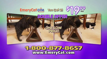 EmeryCat Gym TV Spot, 'File Their Own Claws' - Thumbnail 9