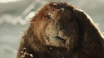 Dinty Moore Beef Stew TV Spot, 'Stewski'