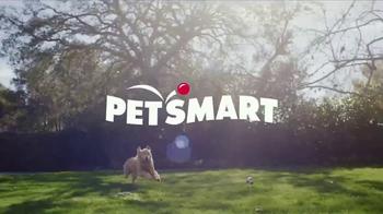 PetSmart TV Spot, 'Buy a Bag, Give a Meal' - Thumbnail 1