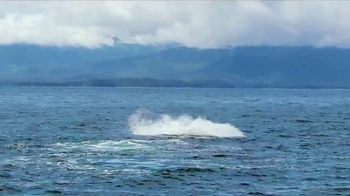 Holland America Line TV Spot, 'The Oprah Magazine Alaskan Cruise' - Thumbnail 3