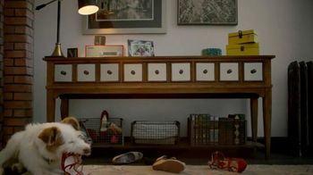 HomeGoods TV Spot, 'Dinner Party' - 2106 commercial airings