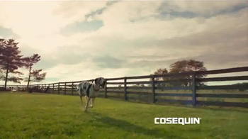 Cosequin TV Spot, 'On the Farm' Song by The Tokens - Thumbnail 1