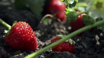 Fage Strawberry Yogurt TV Spot, 'Matchmaker' - Thumbnail 2