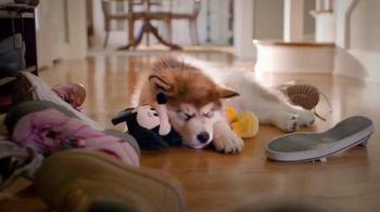 PetSmart TV Spot, 'Pets Inspire' - Thumbnail 1