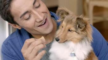 PetSmart TV Spot, 'Pets Inspire' - Thumbnail 2