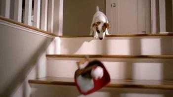 PetSmart TV Spot, 'Pets Inspire' - Thumbnail 3
