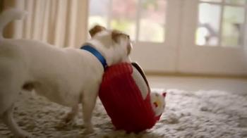 PetSmart TV Spot, 'Pets Inspire' - Thumbnail 4