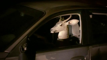 Yelp TV Spot, 'Deer in Headlights' - Thumbnail 9