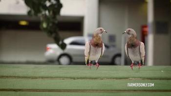 FarmersOnly.com TV Spot, 'Pigeons Singing' - Thumbnail 2