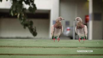 FarmersOnly.com TV Spot, 'Pigeons Singing' - Thumbnail 4