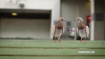 FarmersOnly.com TV Spot, 'Pigeons Singing' - Thumbnail 7