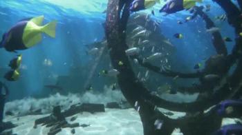 Atlantis Labor Day Sale TV Spot, 'Paradise Island' - Thumbnail 2