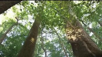 University of South Carolina TV Spot, 'What No Limits Means to Me' - Thumbnail 1
