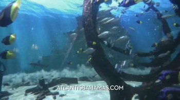 Atlantis TV Spot, 'Last Chance for Air Credit' - Thumbnail 1