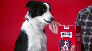 Milk-Bone TV Spot, 'Milk & Cookies' - Thumbnail 3