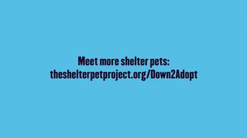 The Shelter Pet Project TV Spot, 'Maxie' - Thumbnail 9