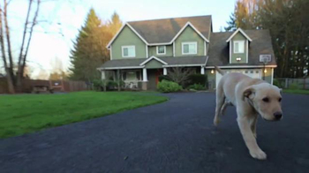 Coldwell Banker Homes for Dogs Project TV Spot, 'Adopt a Pet' - Thumbnail 9