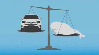 Toyota TeenDrive365 TV Spot, 'Beluga Whales' - 982 commercial airings