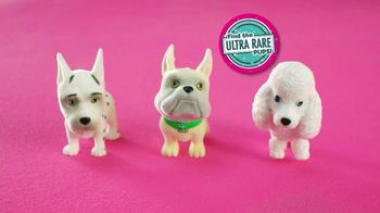 Puppy In My Pocket TV Spot, 'Which One Will You Get?'