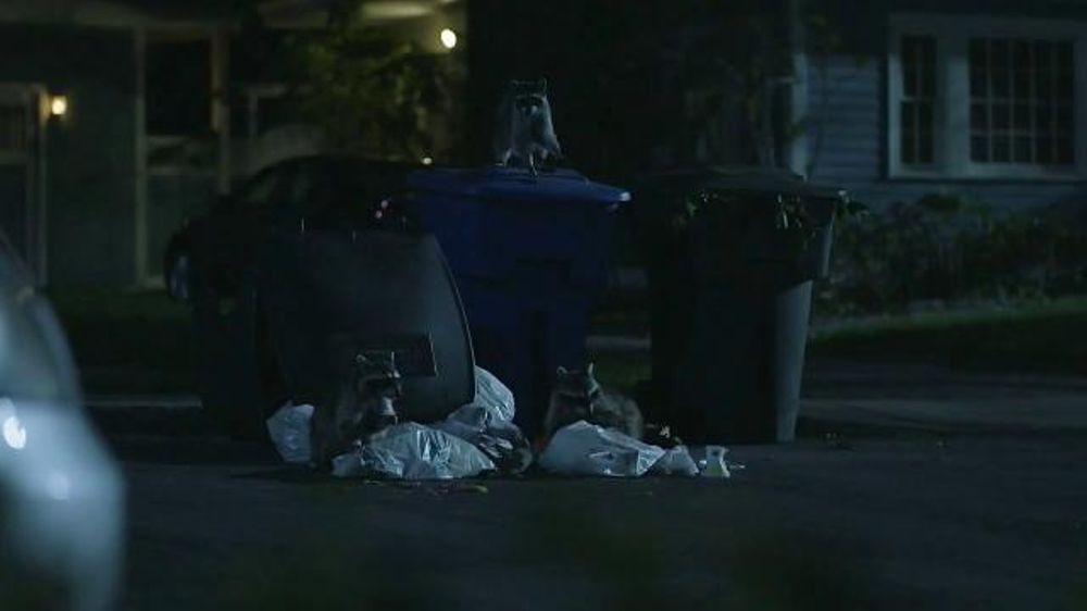 Roadside Assistance Progressive >> GEICO TV Commercial, 'Raccoons, C'mon Try It!: It's What You Do' - iSpot.tv