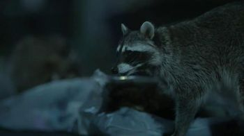 GEICO TV Spot, 'Raccoons, C'mon Try It!: It's What You Do' - Thumbnail 10