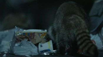 GEICO TV Spot, 'Raccoons, C'mon Try It!: It's What You Do' - Thumbnail 2