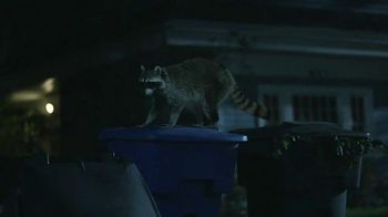 GEICO TV Spot, 'Raccoons, C'mon Try It!: It's What You Do' - Thumbnail 7