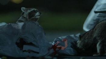 GEICO TV Spot, 'Raccoons, C'mon Try It!: It's What You Do' - Thumbnail 8