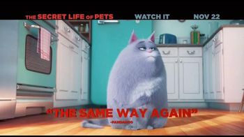 The Secret Life of Pets Home Entertainment TV Spot