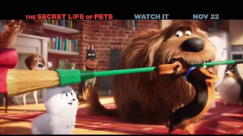 The Secret Life of Pets Home Entertainment TV Spot - Thumbnail 2