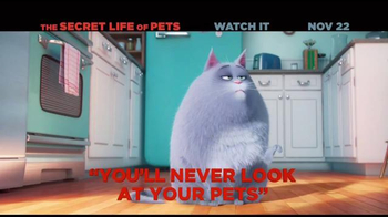 The Secret Life of Pets Home Entertainment TV Spot - Thumbnail 3