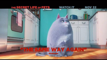 The Secret Life of Pets Home Entertainment TV Spot - Thumbnail 4