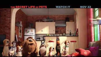 The Secret Life of Pets Home Entertainment TV Spot - Thumbnail 5