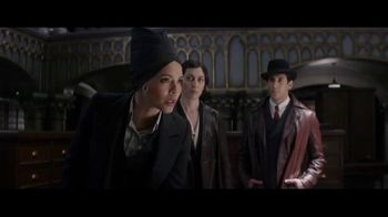 Fantastic Beasts and Where to Find Them - Alternate Trailer 47