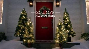 Big Lots TV Spot, 'Urn Trees and Flurry Projector' - Thumbnail 7