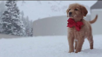 Lexus December to Remember Sales Event TV Spot, 'Forgery' - Thumbnail 4
