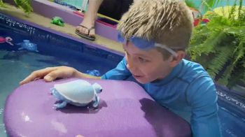 Little Live Pets Little Turtles TV Spot, 'From Land to Water' - 914 commercial airings