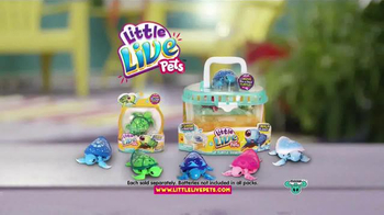 Little Live Pets Little Turtles TV Spot, 'From Land to Water' - Thumbnail 9