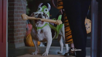 PetSmart TV Spot, 'Trick-or-Treat Dog' Song by Queen