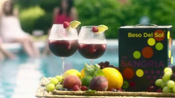 Beso Del Sol Sangria TV Spot, 'Perfect Sangria' - Thumbnail 9