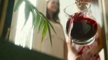 Beso Del Sol Sangria TV Spot, 'Perfect Sangria' - Thumbnail 8